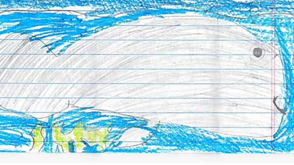 """Christopher Burke, 9, pleaded for officials to keep the current status: """"I'm so happy that manatee population is increasing! But at the same time hopping you will not stop protecting them! Please don't down list manatees. I LOVE manatees and got my best friend to love them too."""""""