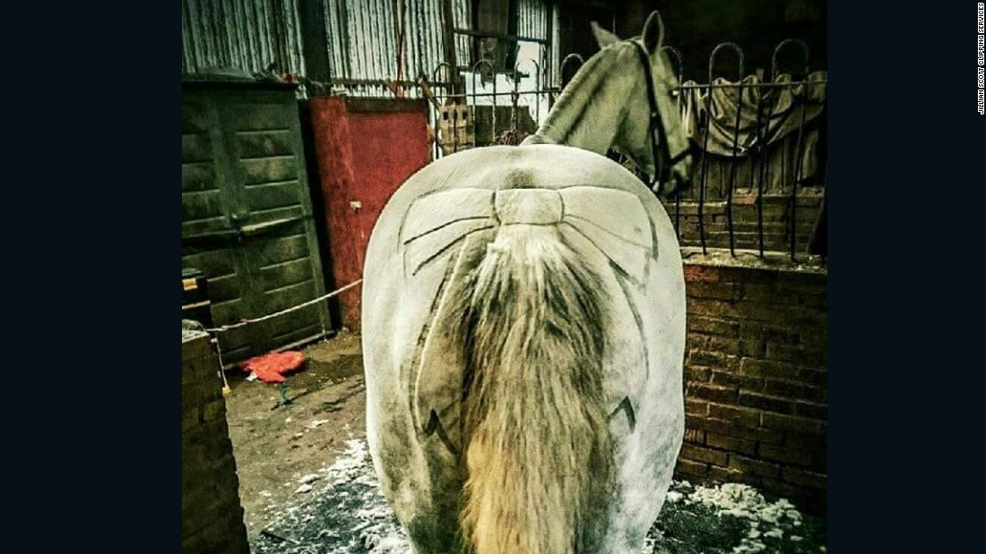 The price of a horse haircuts range from $25 for simple designs to $75 for the most complex.