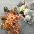 08 stuffed animals reading
