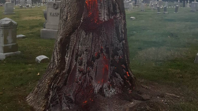 Lightning strike causes tree trunk to explode.