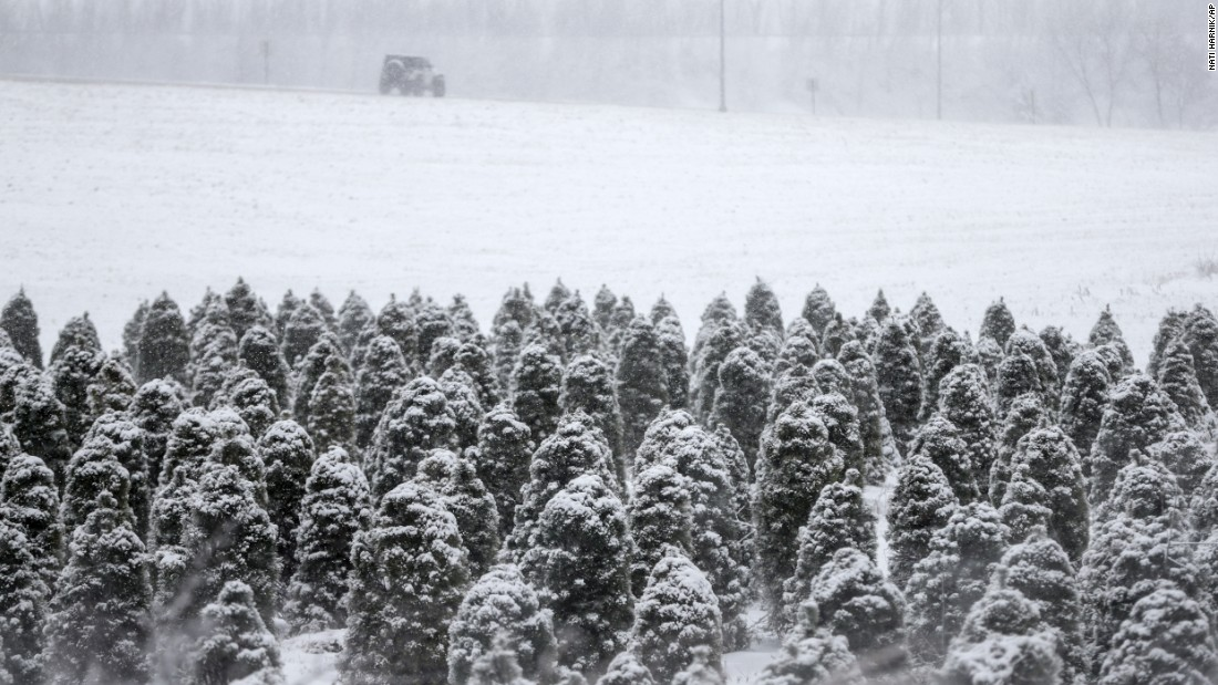 A Jeep drives near a tree farm in snowy Blair, Nebraska, on Friday, February 24.