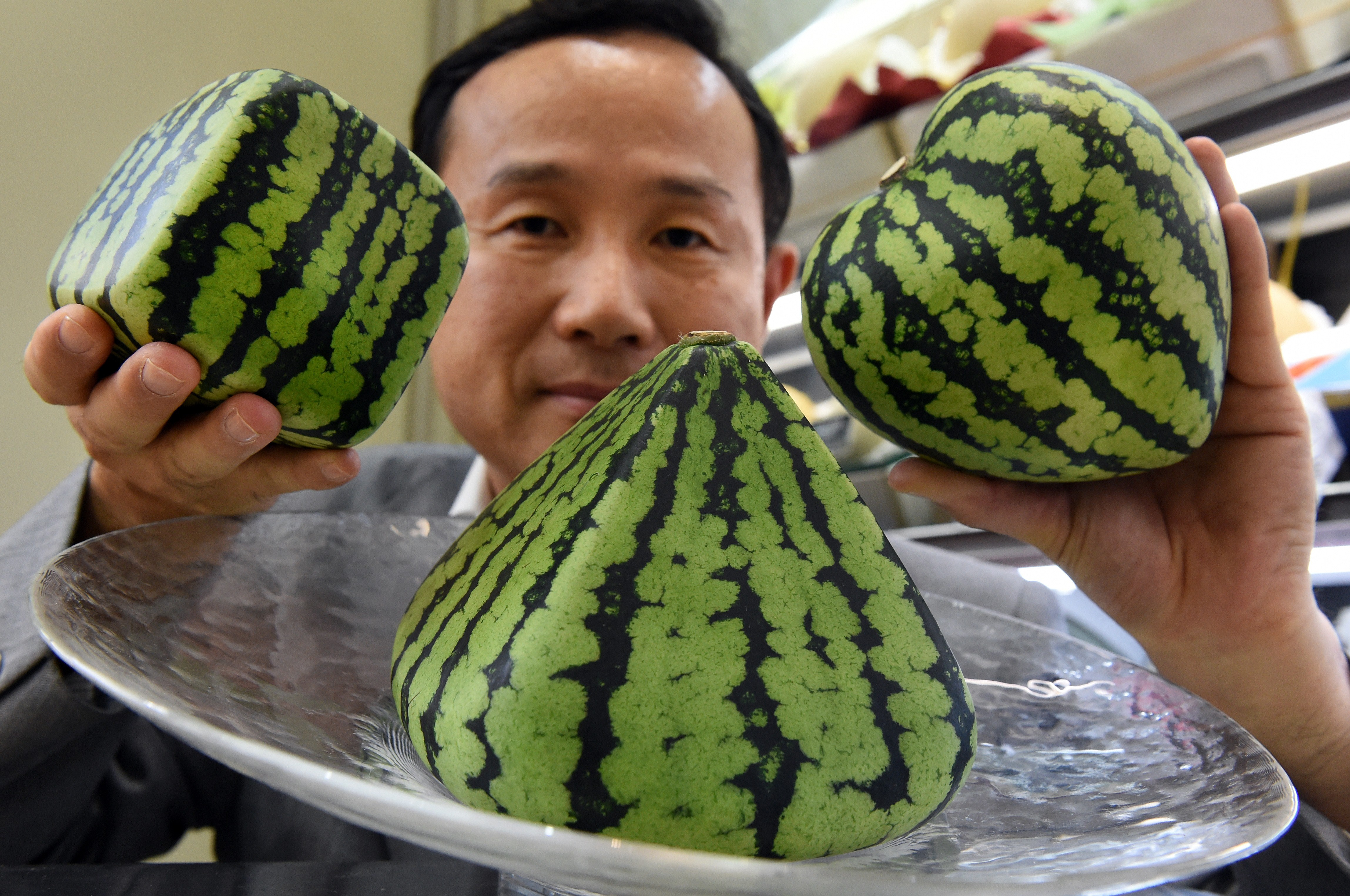 Image result for japan shaped watermelon