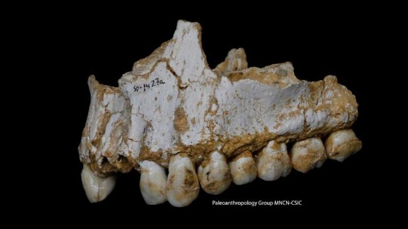 DNA analysis from tooth plaque reveals insight into  Neanderthals