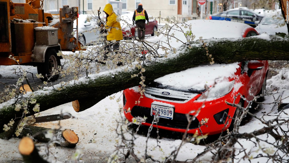 Workers clear debris after a tree branch fell on a parked car in Baltimore on March 14.