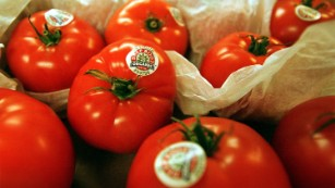 Companies have warned of potential food shortages of perishable items like tomatoes in the event of a no deal.
