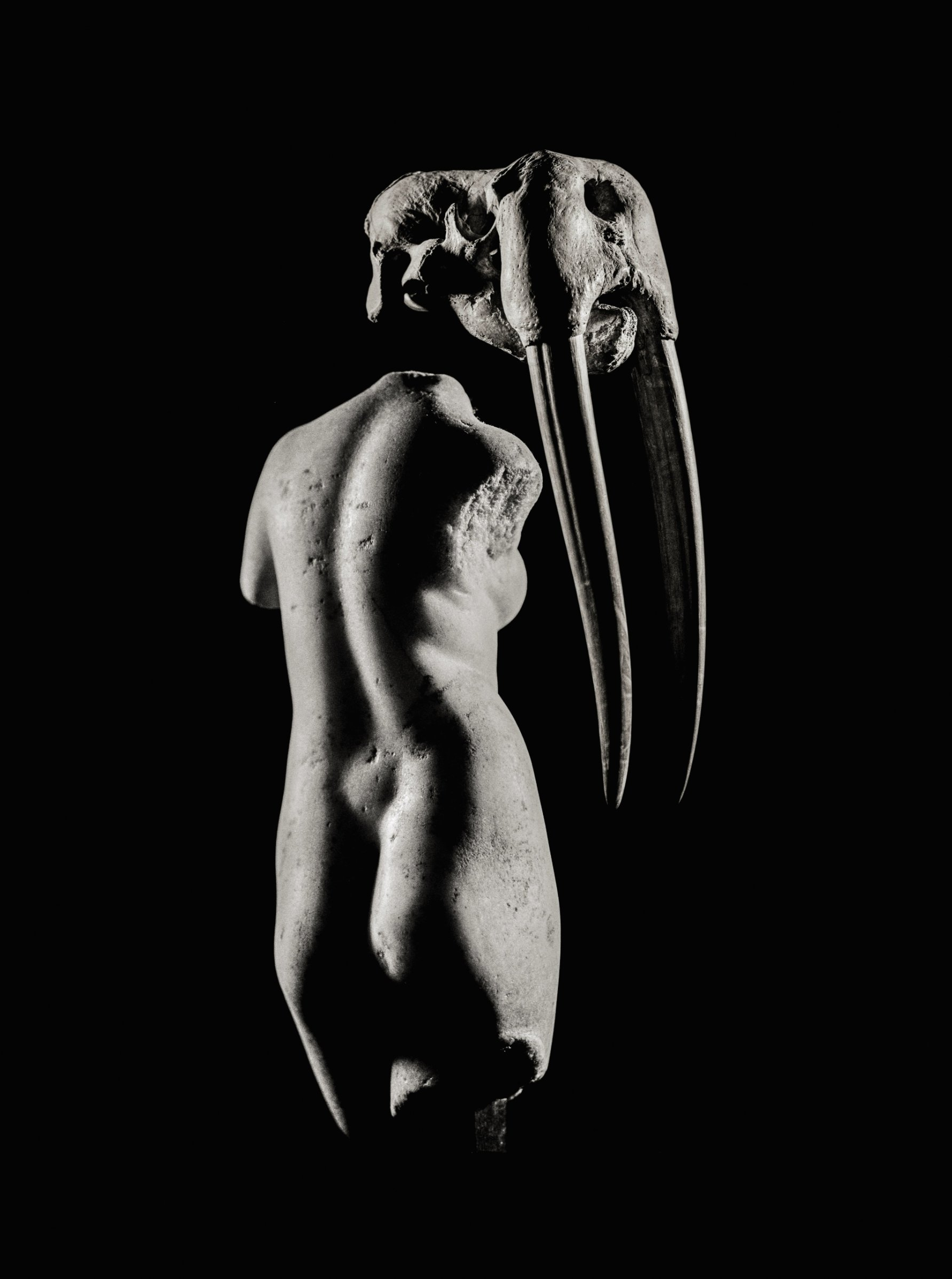Asian erotic art mammoth ivory can