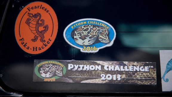 Stickers from previous python hunts adorn the back of Donna Kalil