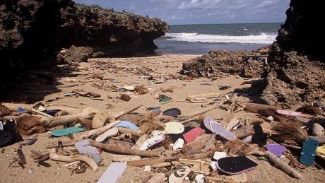 d4b5c6901bff Millions of discarded flip flops threaten ocean life