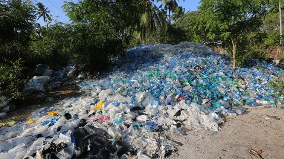 Reports show that eight million tons of plastic enter the oceans every year.