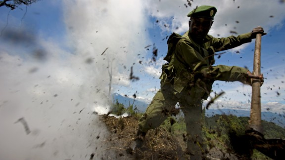 Pictured here, rangers destroy an illegal charcoal kiln while conducting an anti-charcoal patrol in the Kibati region of Virunga National Park, in 2008.   There were eight active charcoal kilns in an area where the forest had been cut to the ground and trees burnt for charcoal production.