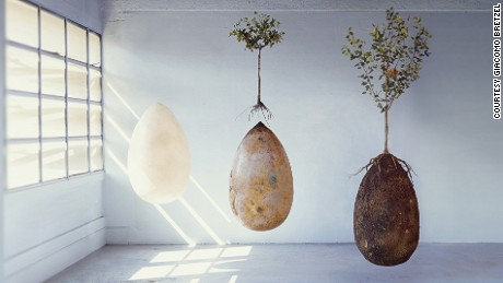 Capsula Mundi is an egg-shaped pod through which a buried corpse or ashes can provide nutrients to a tree planted above it.