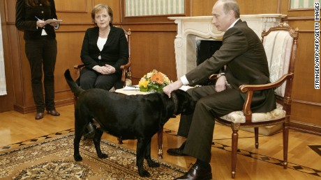Putin (R) pats his dog Koni in Merkel's presence, in Sochi on January 21, 2007.