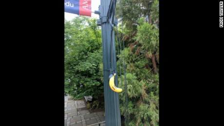 "The bananas carried messages, such as ""Harambe bait"" and a reference to a black sorority."