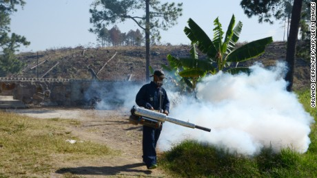 An employee of the Health Secretariat fumigates against the Aedes aegypti mosquito in Tegucigalpa on February 24, 2016. According to official sources, in Honduras there are 10,000 people infected with zika, 4,000 with dengue -one killed- and 4,000 with chikungunya.   AFP PHOTO /Orlando SIERRA / AFP / ORLANDO SIERRA        (Photo credit should read ORLANDO SIERRA/AFP/Getty Images)