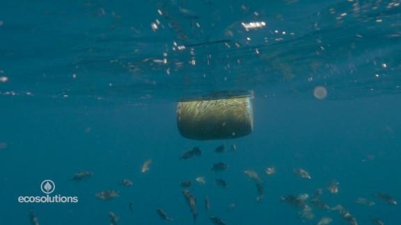 eco solutions plastic ocean_00000404.jpg