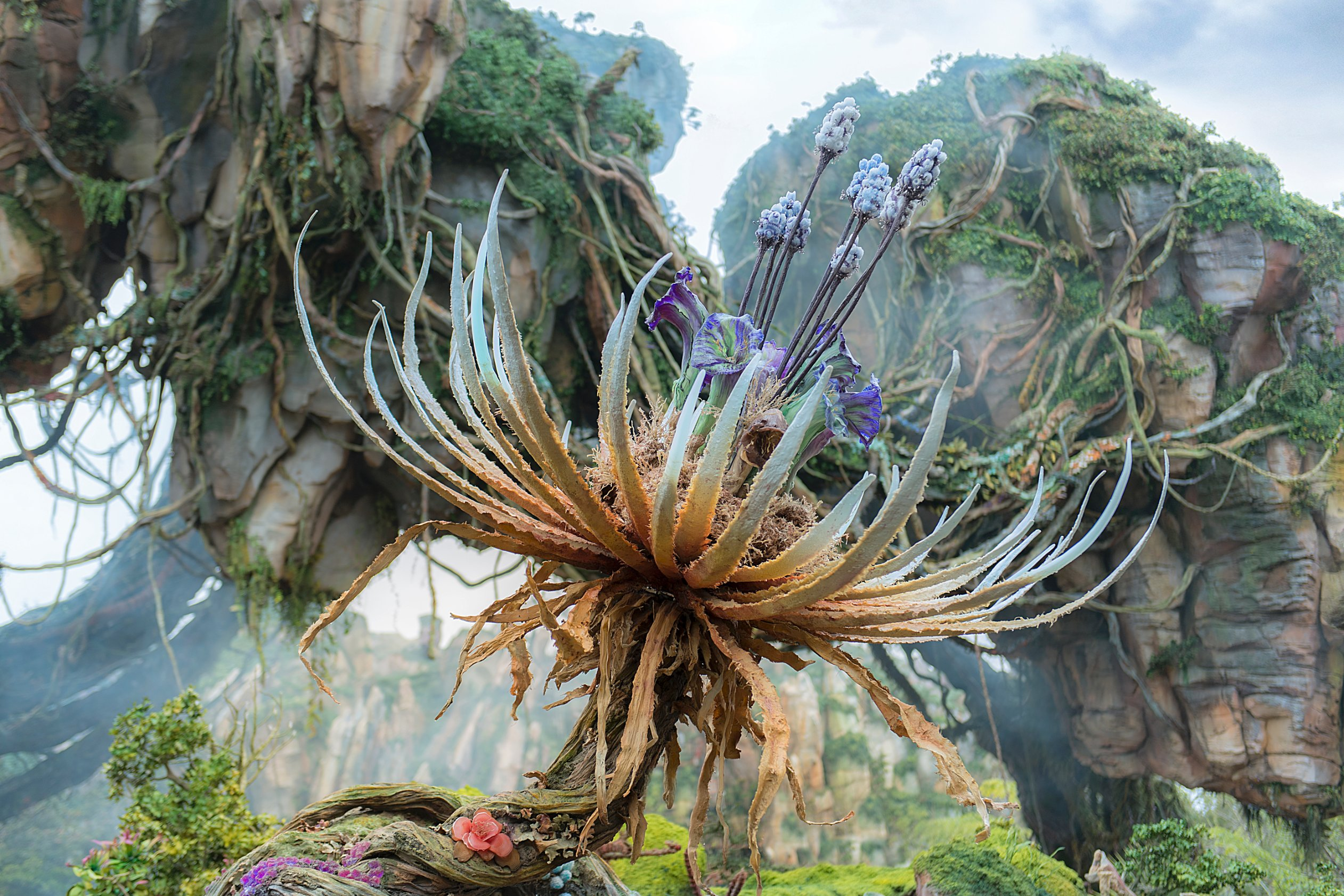 First Look Inside Disneys Avatar World Of Pandora