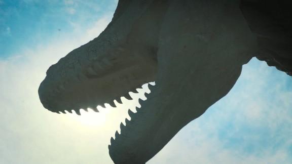 china dinosaur artist orig_00000004.jpg