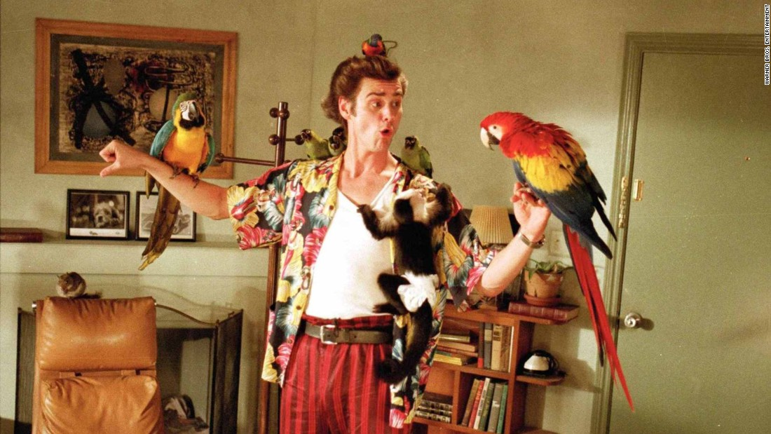 """""""Ace Ventura: Pet Detective"""": Jim Carrey stars as a rambunctious wildlife detective who tries to aid the search for the Miami Dolphins' missing mascot. (Hulu"""