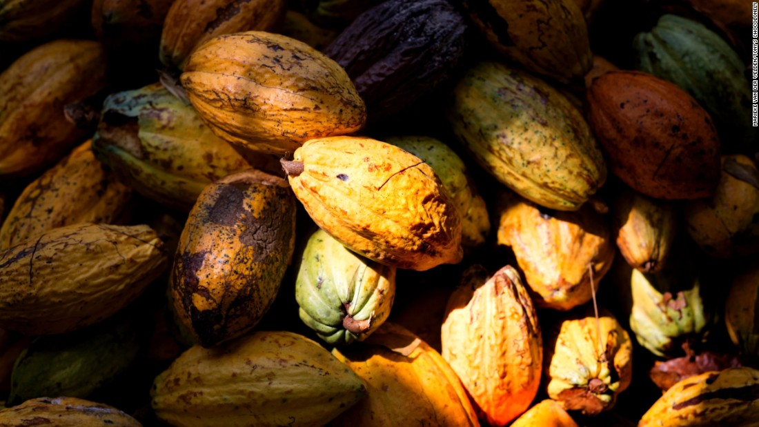 Chocolate is a huge global industry, but cocoa beans, which are used to make chocolate, are grown by some of the poorest people on the planet, in plantations that can hide the worst forms of child labor.
