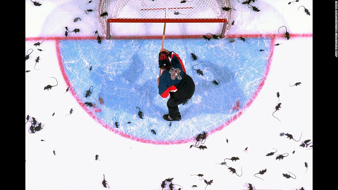 Hockey fans have some strange traditions (See: throwing octopi on the ice), but during the Florida Panthers' 1996 run to the Stanley Cup finals, a new one was born. After the Panthers' Scott Mellanby allegedly killed a rat with his stick and then scored twice with the same stick, Panthers fans began celebrating goals by hurling hundreds of plastic rats onto the ice.