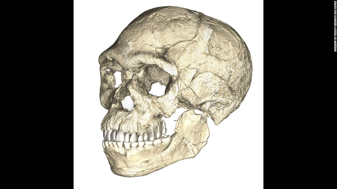 This is a composite reconstruction of the oldest Homo sapiens fossils found in Morocco, using scans of original fossils found at the site.