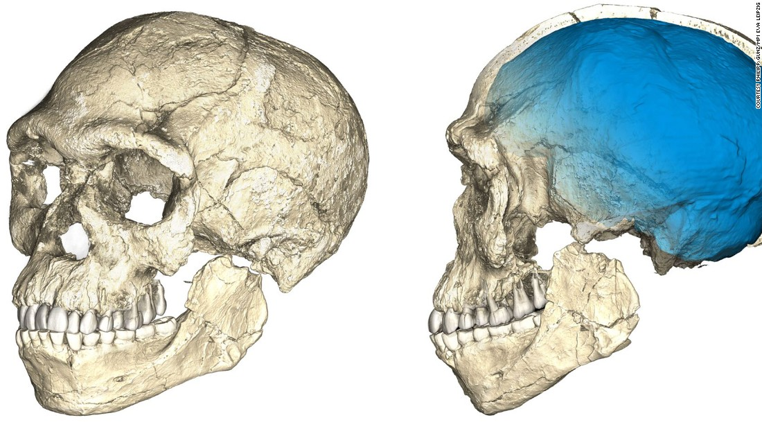 While the facial features appear more modern and comparative to ours, the brain case is elongated. This suggests that the brain shape and function evolved in these early Homo sapiens.