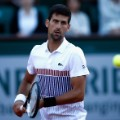 djokovic lacoste fashion