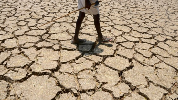 An Indian farmer in a dried up cotton field in the southern Indian state of Telangana, in April 2016. Much of India is reeling from a heat wave and severe drought conditions that have decimated crops, killed livestock and left at least 330 million people without enough water for their daily needs.