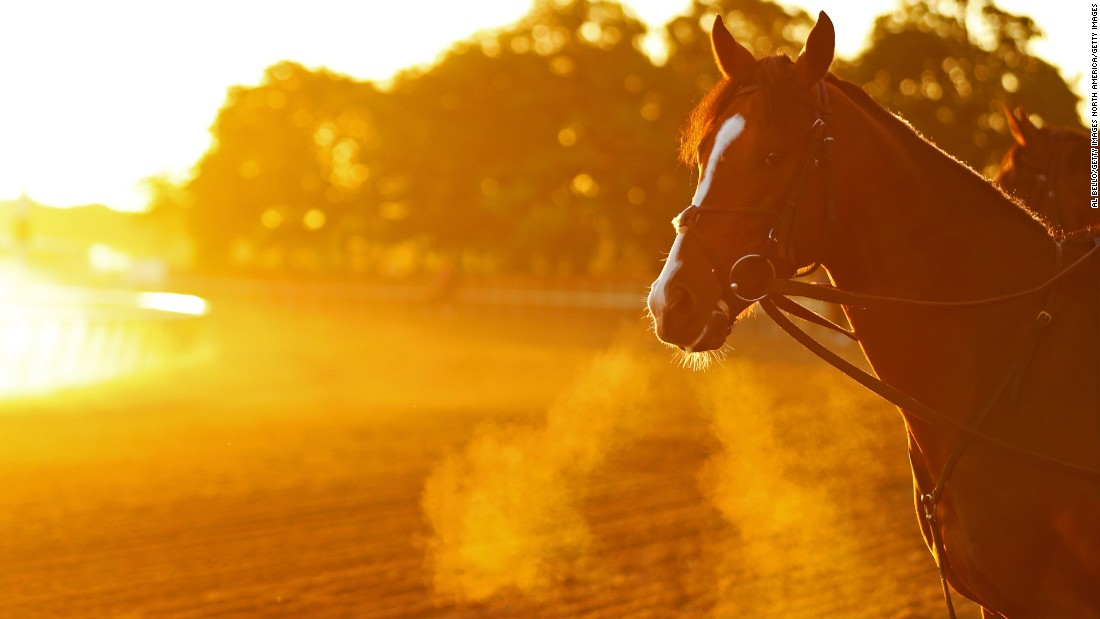 The Belmont Stakes is the oldest event in horseracing's esteemed Triple Crown.