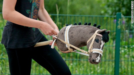 Image result for hobbyhorsing