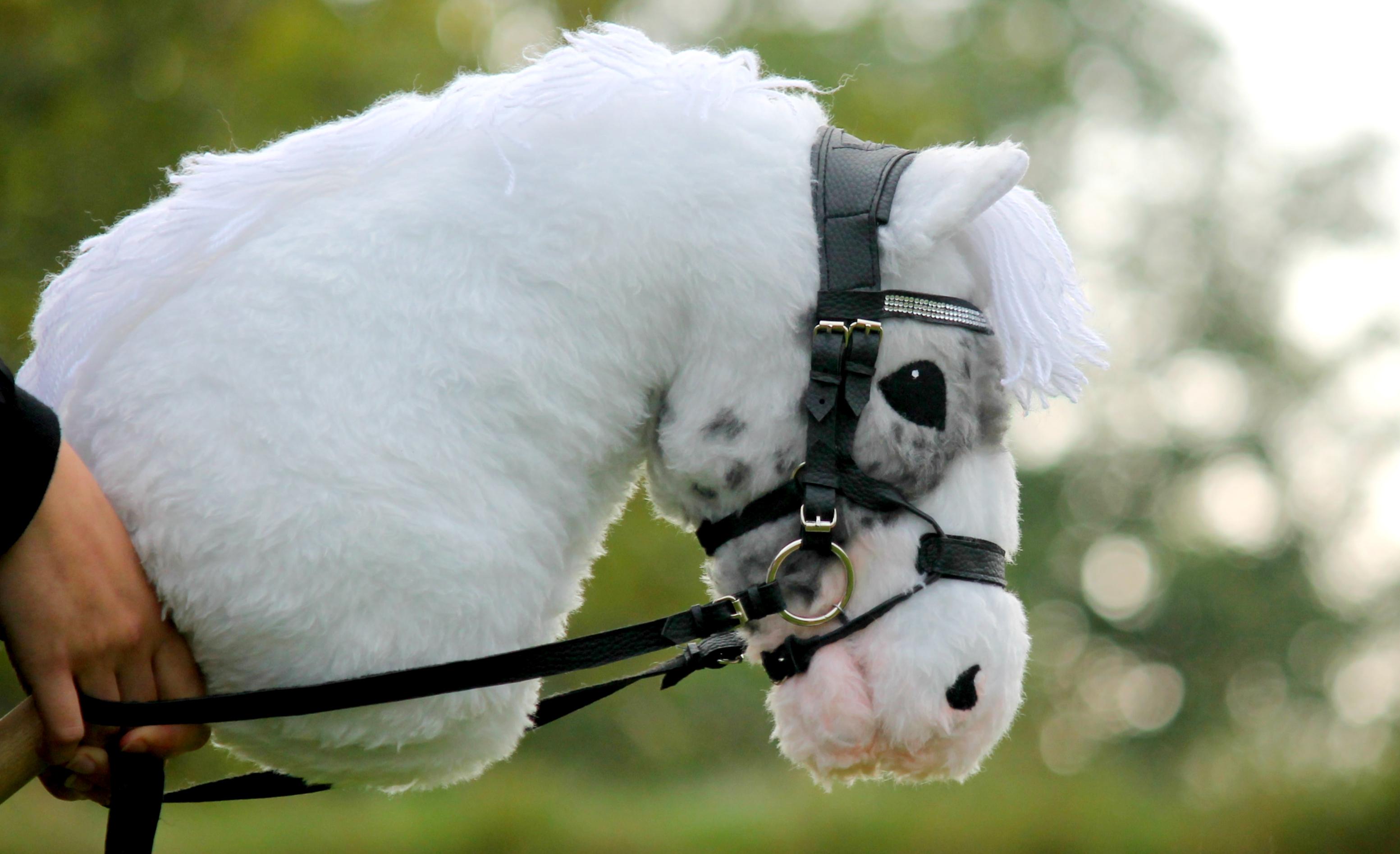 Hobbyhorse Craze Sweeps Across Finland