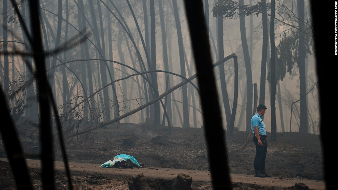 A policeman stands by the body of a victim of a wildfire in Pedrogao Grande, central Portugal.