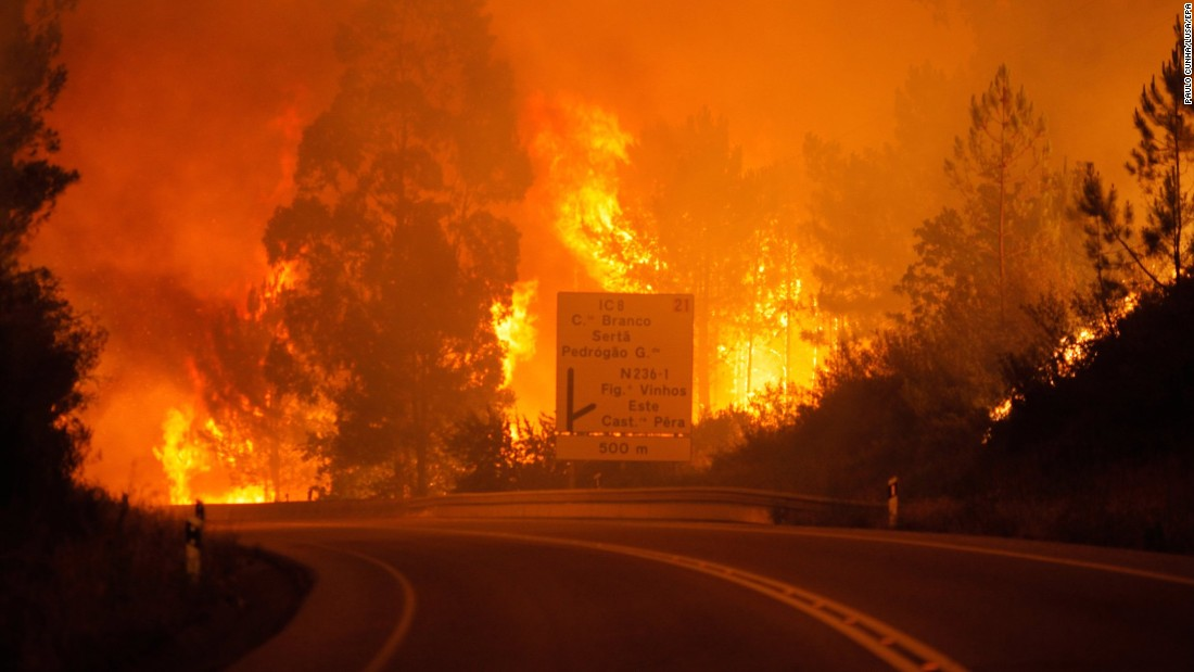 Flames rise during a forest fire in Pedrogao Grande, Portugal.