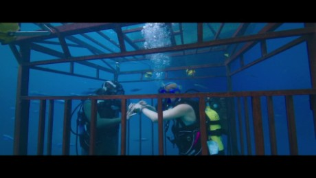 "Movie Pass: Deep-Sea Thriller ""47 Meters Down""_00002415"