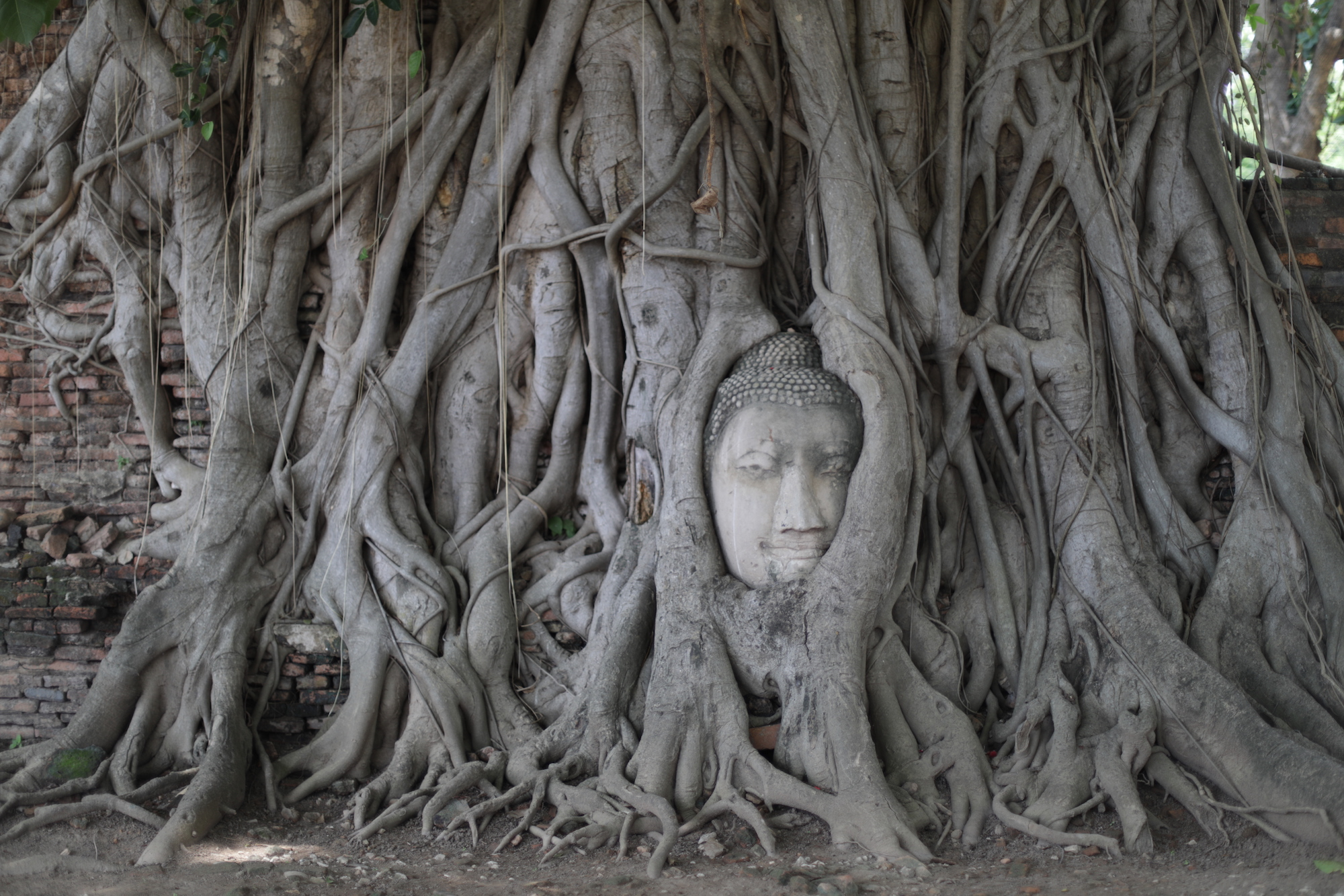 Trip to Ayutthaya, Thailand, recalls glory days of old Siam | CNN ...
