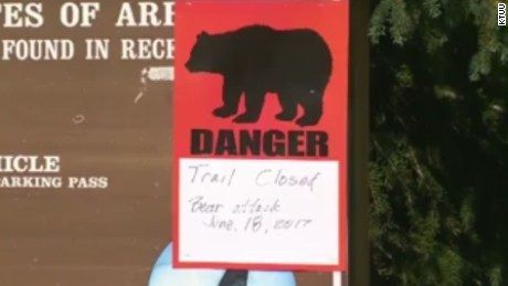 Two bear attacks, two deaths over two days in Alaska in 2017
