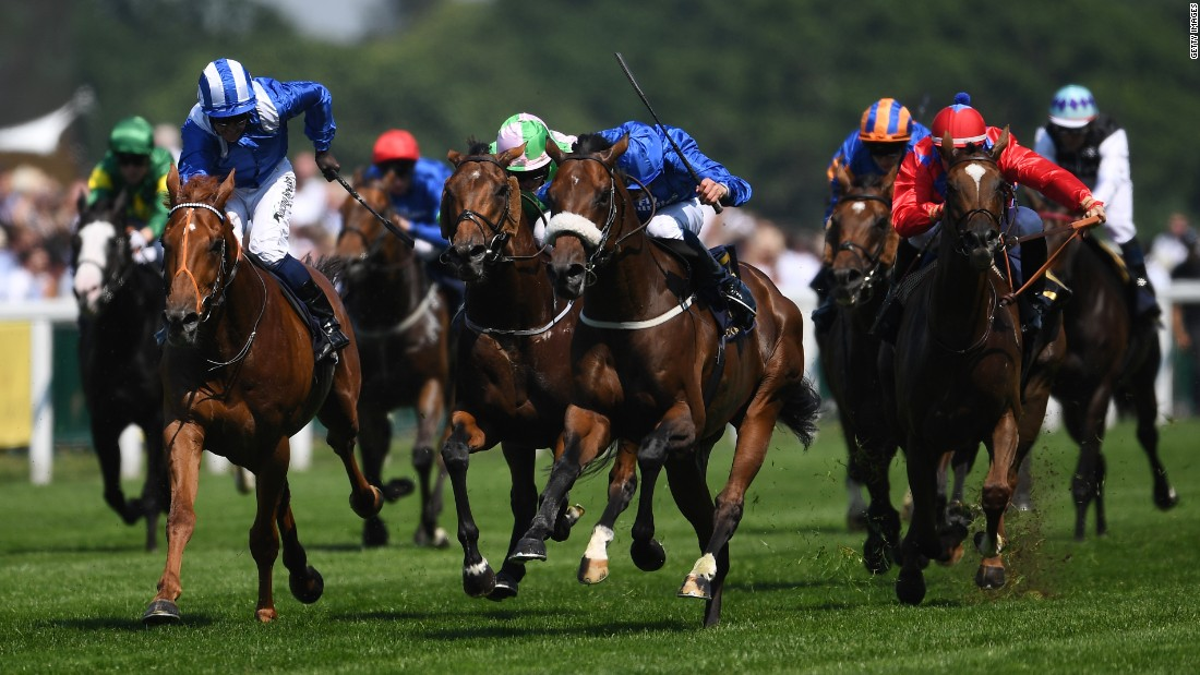 As for the racing ... Jockey William Buick rode Ribchester (sheepskin noseband) to victory in the Queen Anne Stakes on the opening day of Royal Ascot.