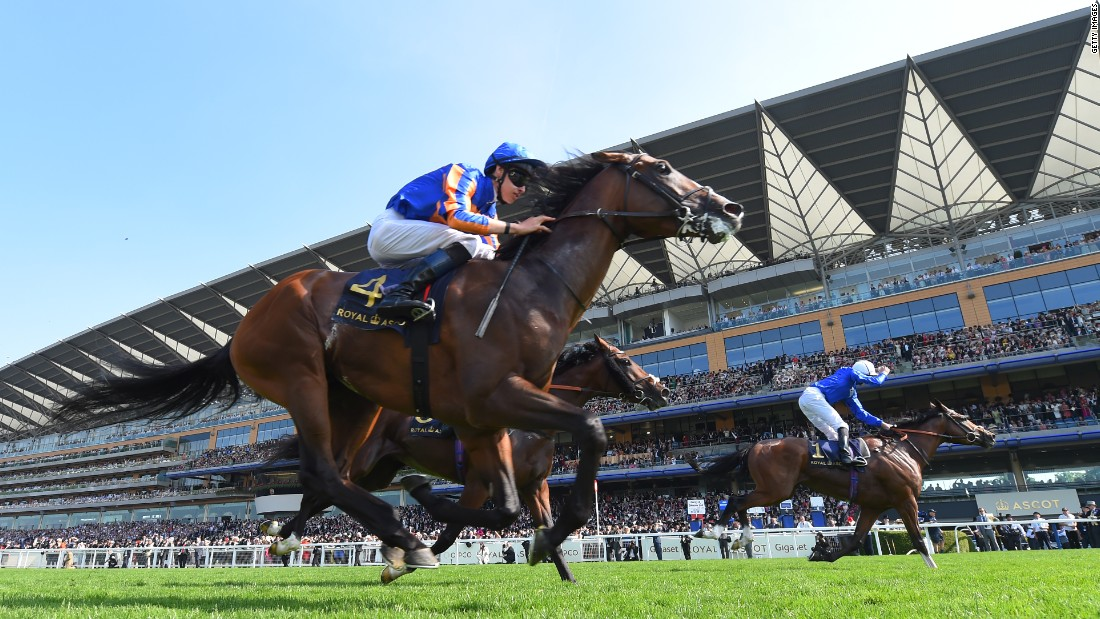 Barney Roy won the St James's Palace Stakes, the third Group 1 race of the day, as favorite Churchill finished fourth.