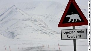 A road sign warns motorists of the presence of polar bears on Svalbard.