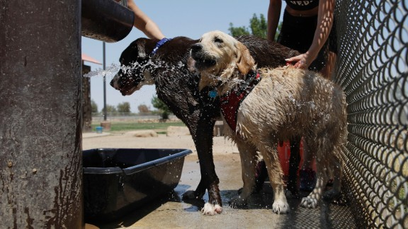 Jennifer Boushy, left, and Jennifer Rellinger cool off their pets at a dog park in Las Vegas on June 20.