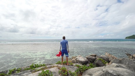 After the storm: How to rebuild a coral reef