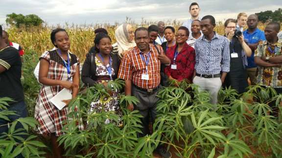 Ndunguru with local scientists in Malawi working to identify infected crops and replace them with resistant varieties.