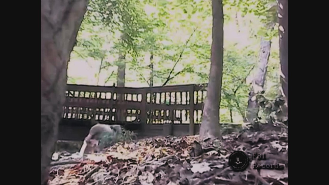This image from an FBI video shows Semenko in a wooded area hiding a package for another spy to pick up. The video offered proof that Semenko was spying for Russia.