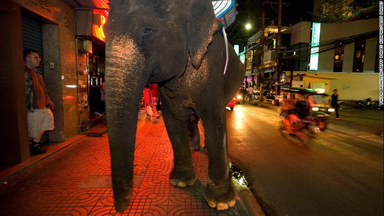 Mandalao Is This Laos Most Responsible Elephant Retreat Cnn