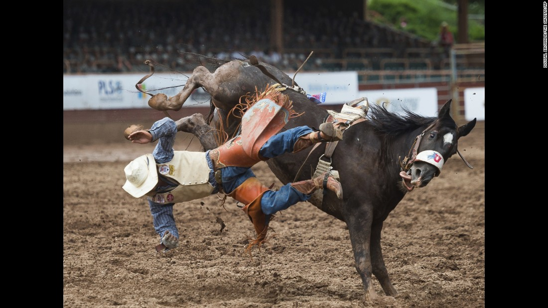 "Taylor Broussard is bucked off ""Slick"" during a bareback division competition at the 77th annual Pikes Peak or Bust Rodeo on Saturday, July 15, in Colorado Springs."