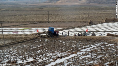 Workers on a farm in North Korea plough a field with a tractor in this file photo from 2011.