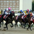 horseracing south korea seoul racecourse close finish