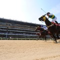 horseracing south korea seoul racecourse finish low angle