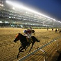 horseracing south korea seoul racecourse night finish