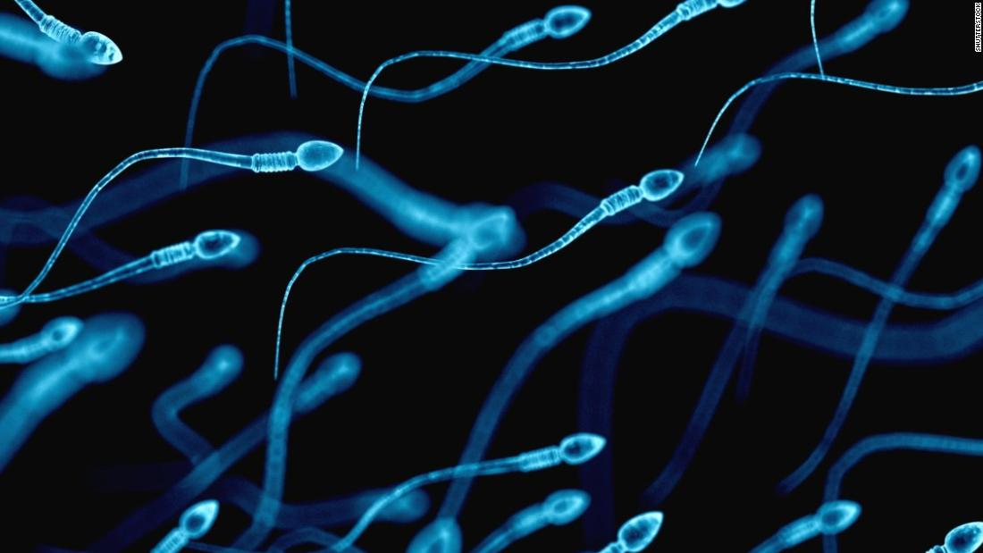 Climate change affecting sperm counts